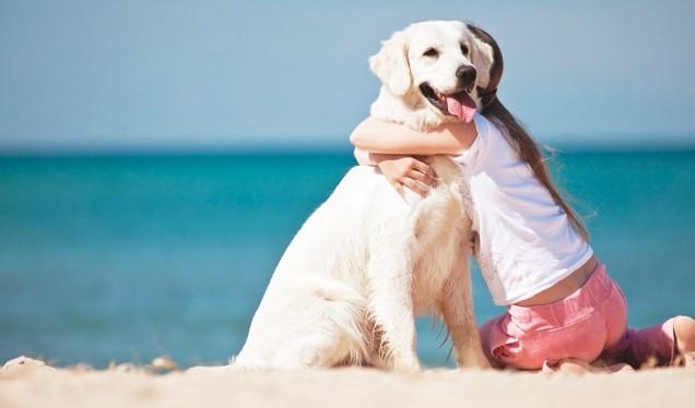 Case vacanza con animali ammessi nel Salento